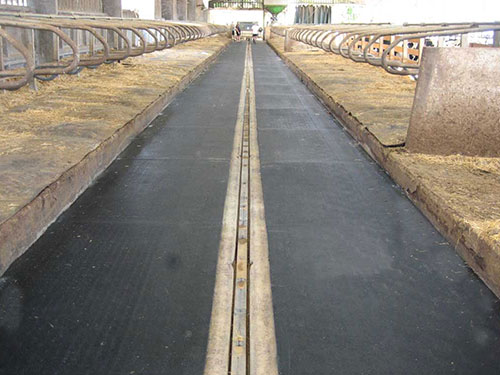 Cow Runner Mats Amp Rolls For Aisleways Amp Alleys