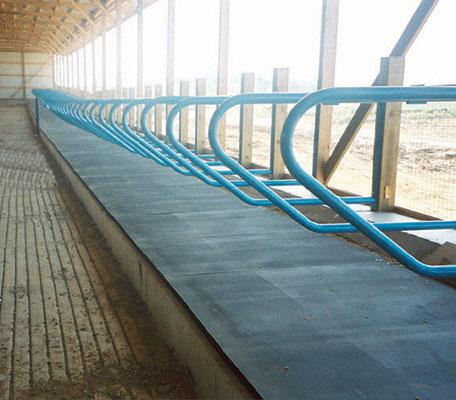 Cow Mattresses Amp Cattle Mattress Pads